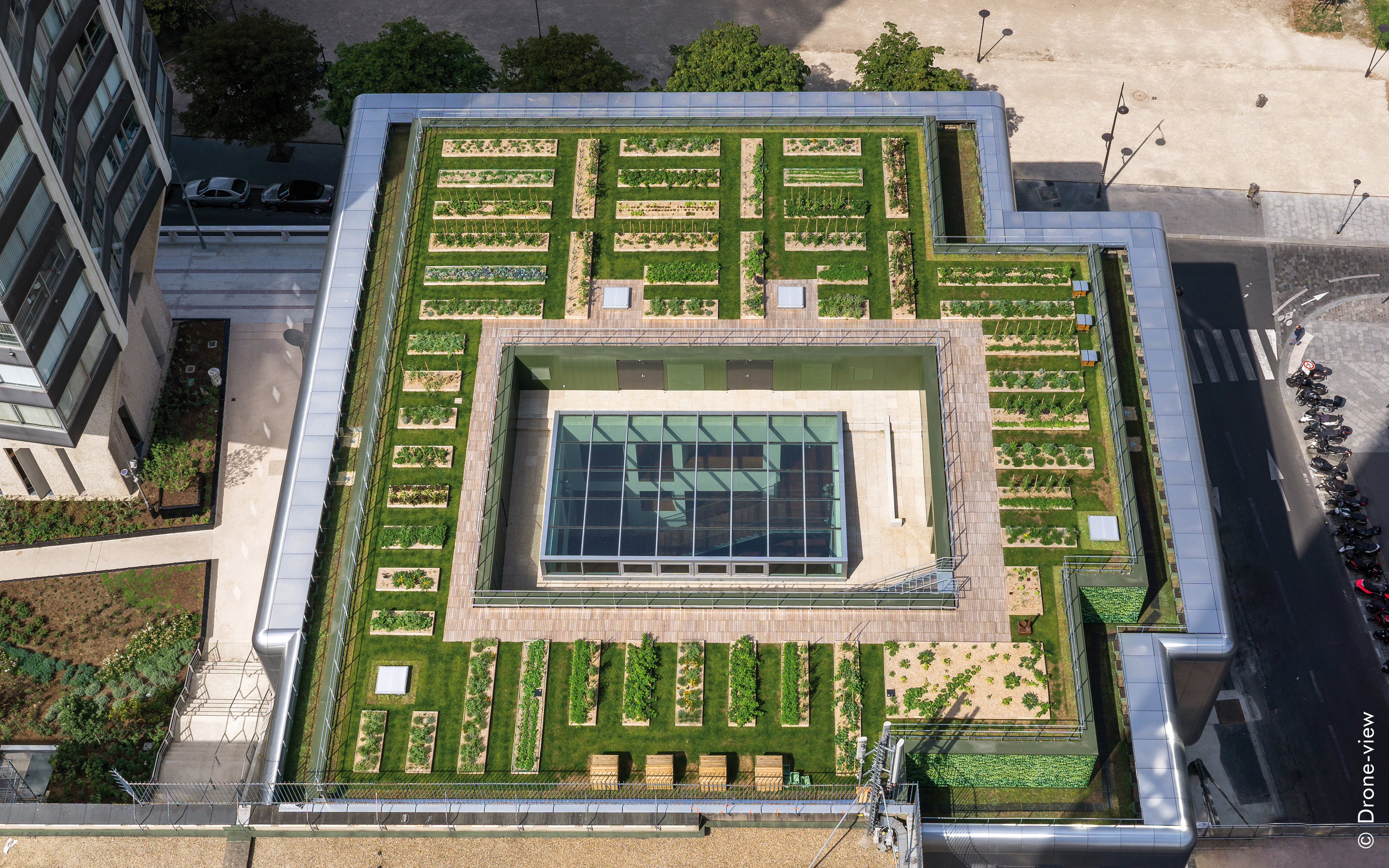 Bird's eye view of a green roof with vegetable plant beds