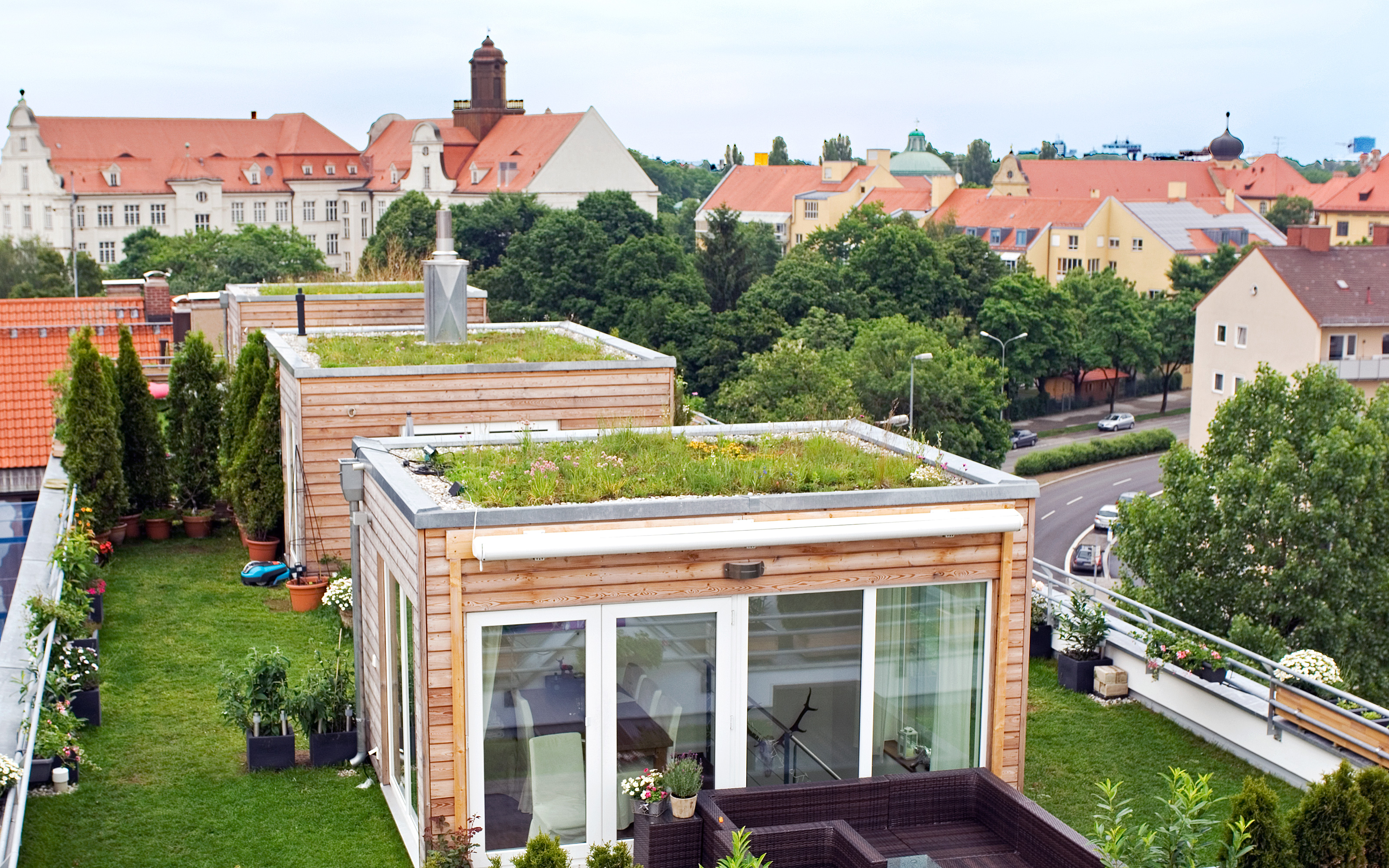 Roof garden with two cubical houses