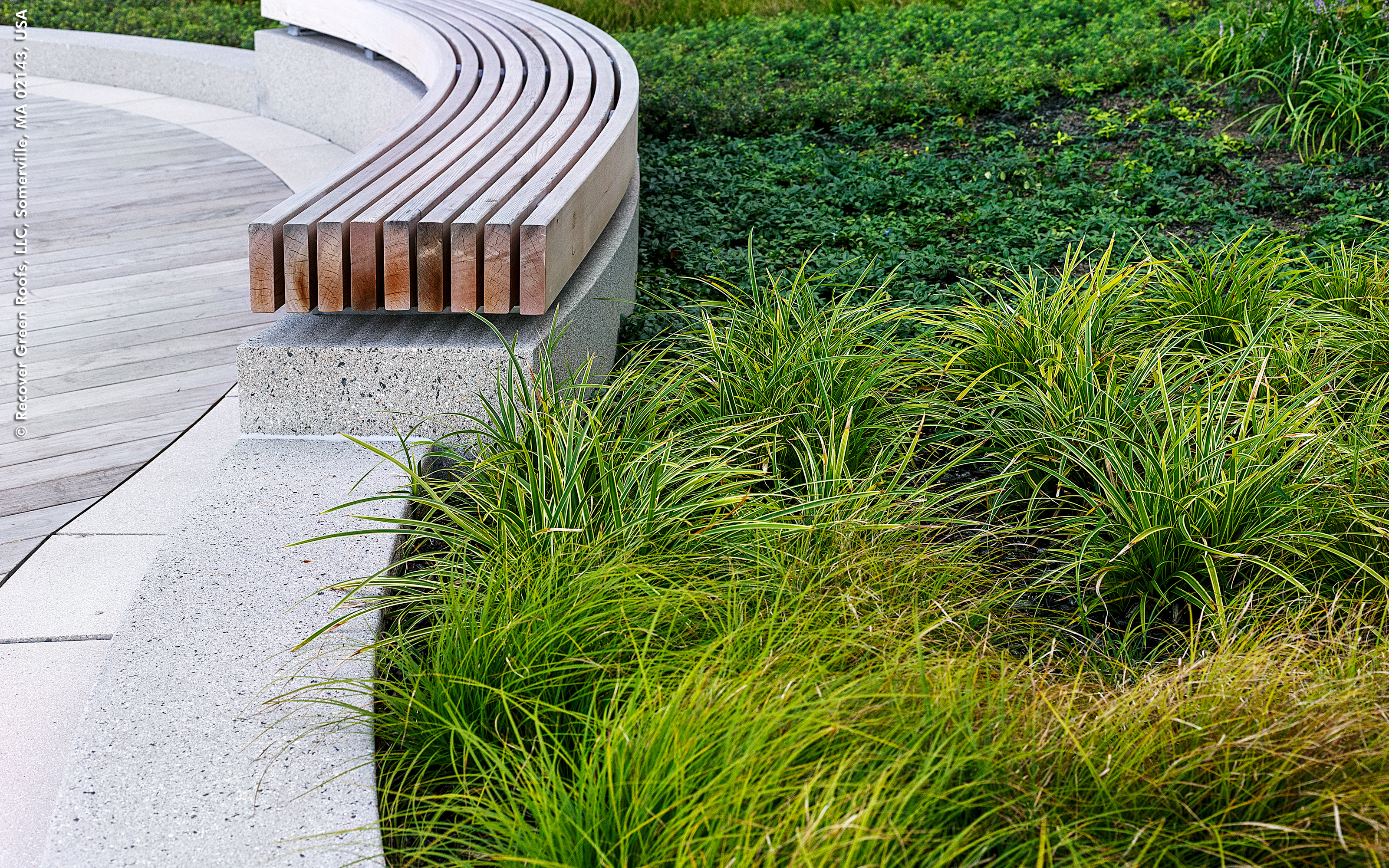 Curved bench and plant bed with grasses