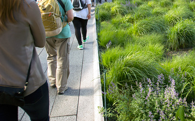 People walking on a green roof