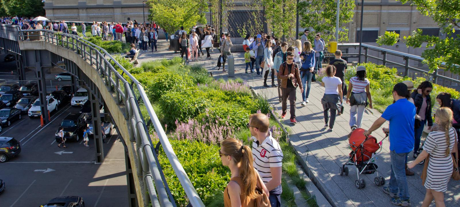 High Line Park New York City Zinco Green Roof Systems Uk