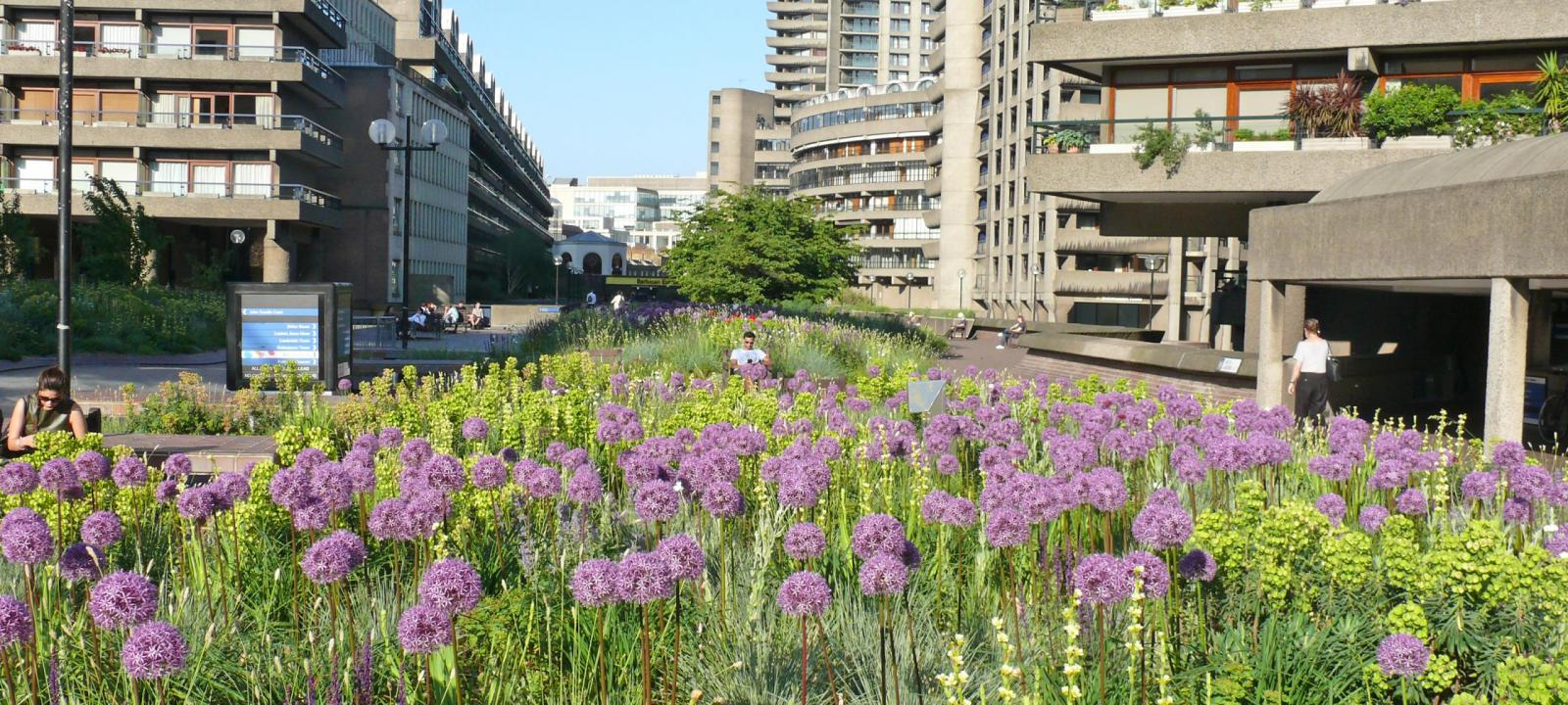 Home Page Zinco Green Roof Systems Uk