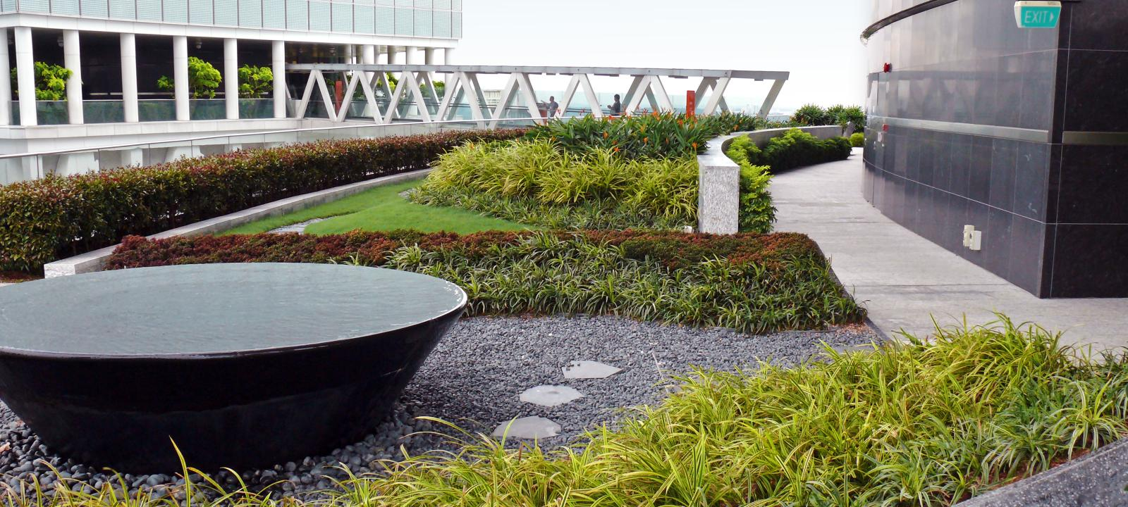 Roof garden with water basin