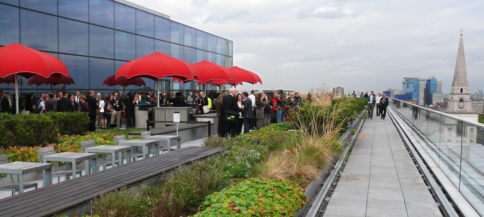 Event on a roof garden in the city