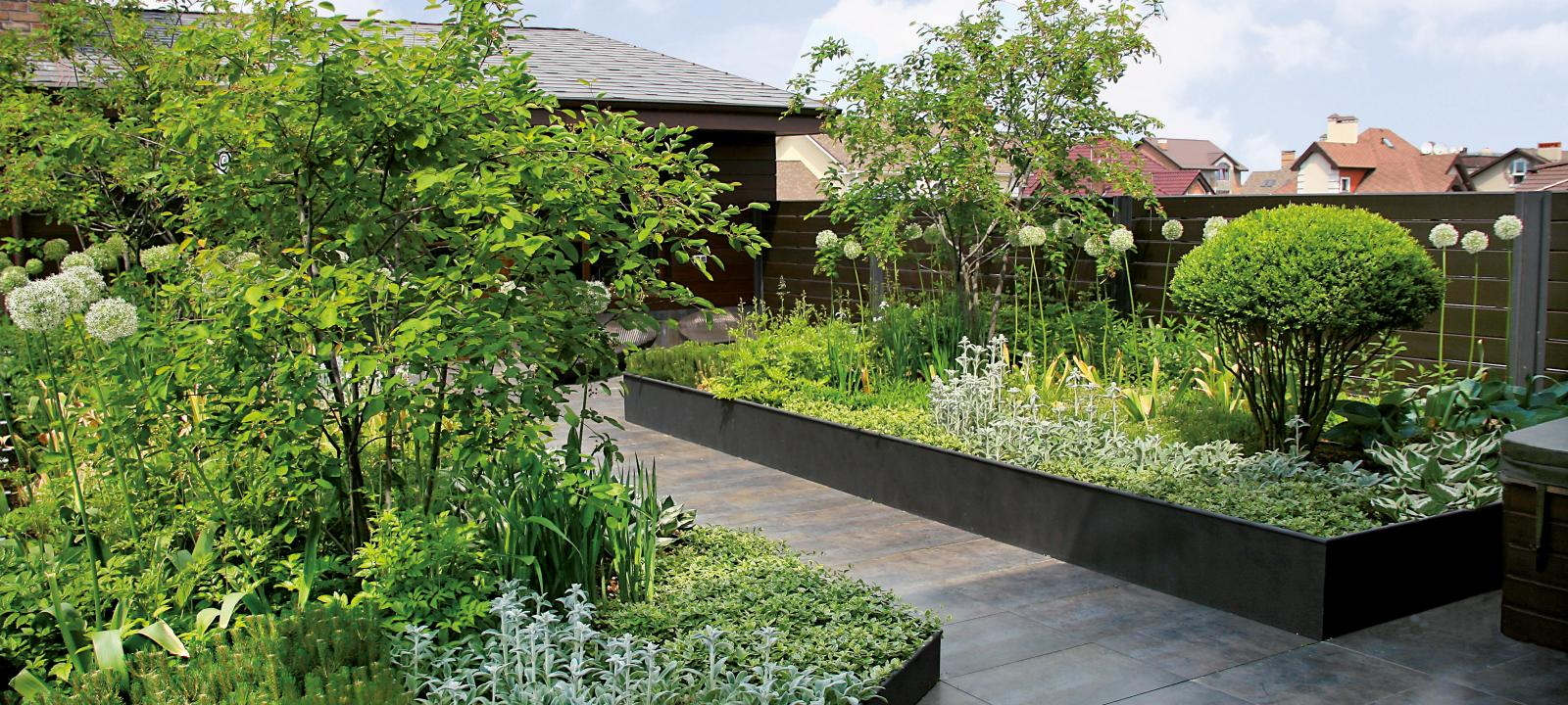 Roof garden with plant beds