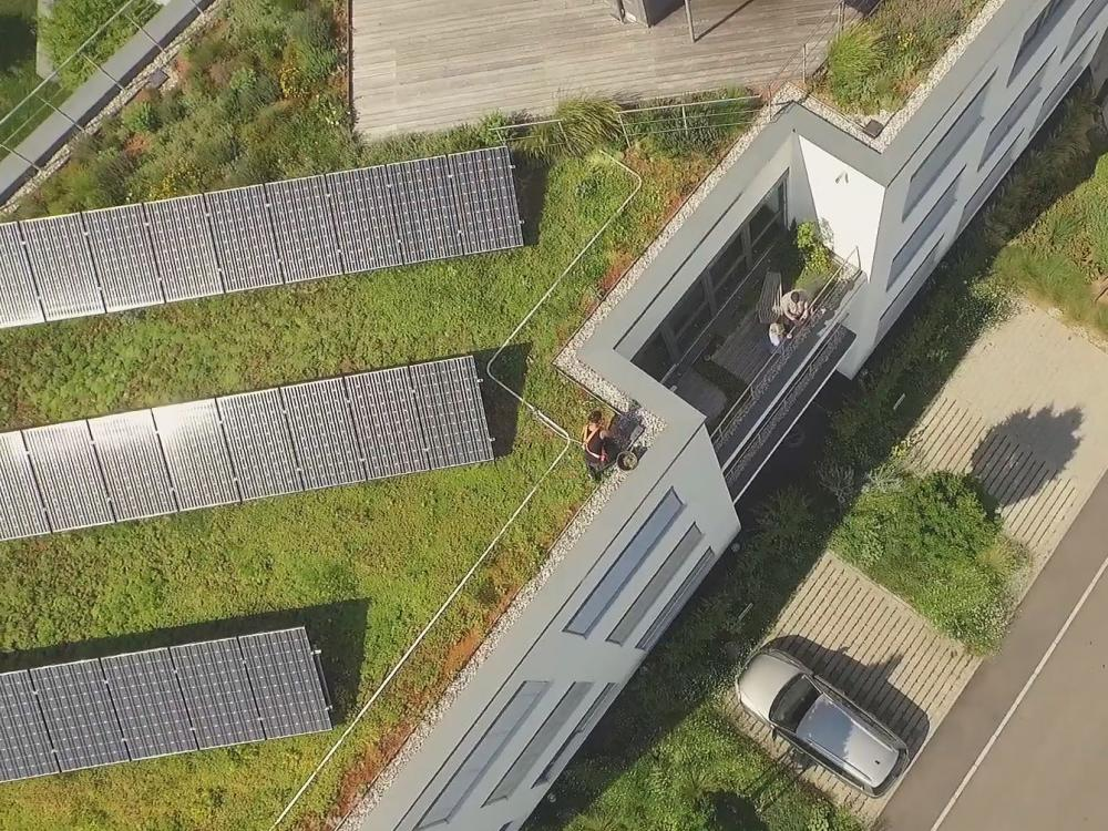 Aerial view of a green roof with photovoltaics