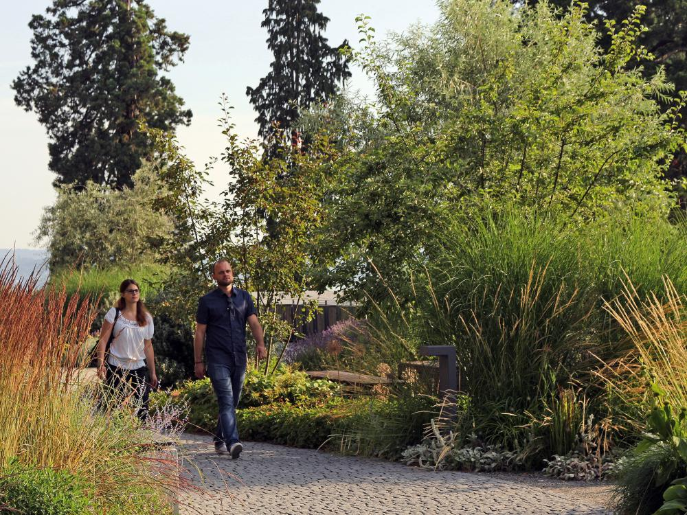 Couple takes a stroll around the lusciously vegetated park