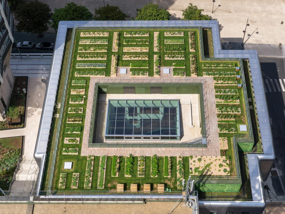 Bird's eye view of the roof garden