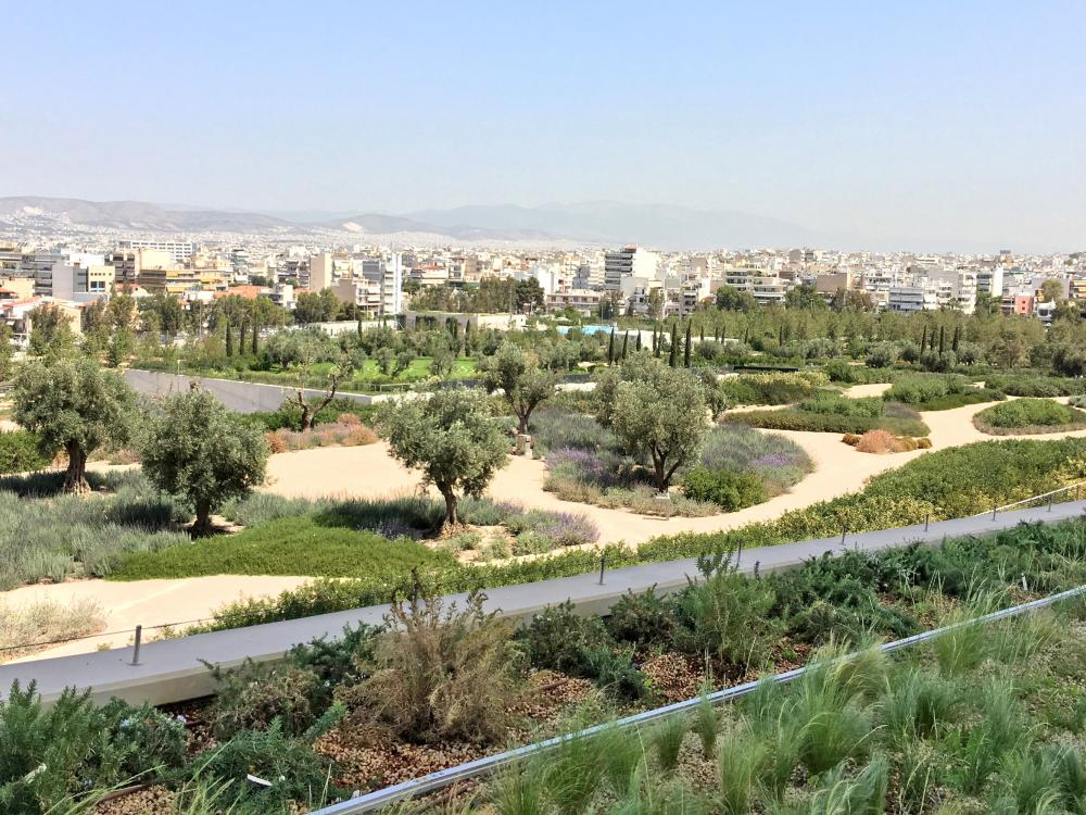 Green roof with pathways leading through mediterranean vegetation