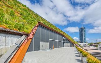 Steep pitched green roof with Sedum
