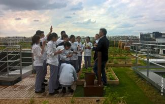Cookery school students on the roof