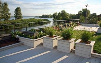 White timber decking and planters with ornamental grasses