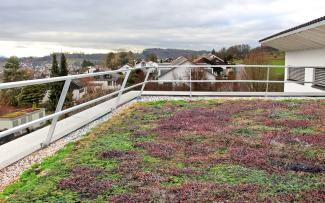 Vegetated roof with guardrail
