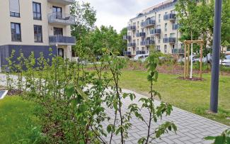 Greened area with shrubs and trees surrounded by housing blocks