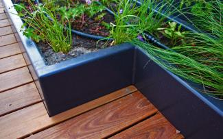 Wooden decking and plant bed