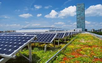 Green roof in combination with photovoltaics