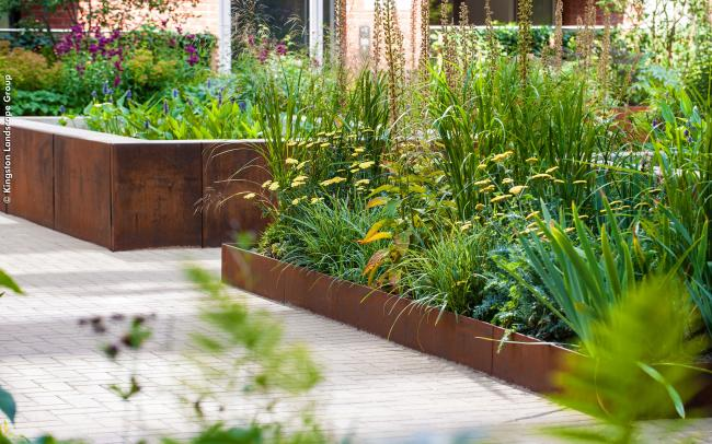 Plant bed with lushious vegetaion surrounded by rusted steel edgings